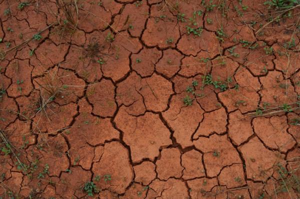 가뭄.png