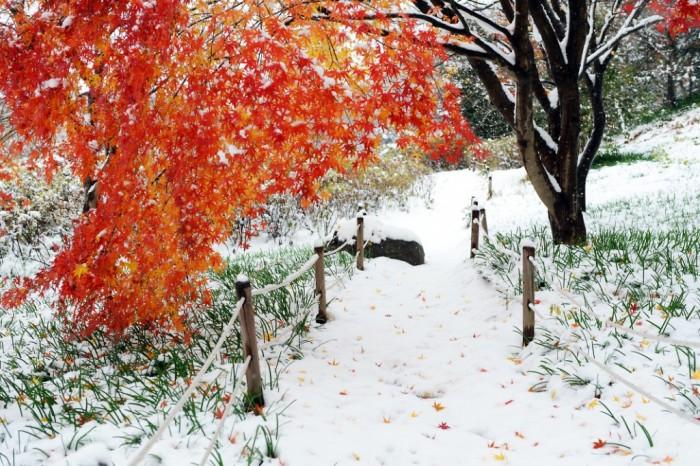 올 겨울, 낭만적인 영광으로 떠나자 1.jpg