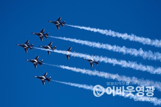 공군 블랙이글스 에어쇼, e-모빌리티 엑스포에 날다 2.jpg