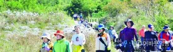 사본 -영광 물무산 가족사랑 힐링 걷기대회 대성황 5.jpg