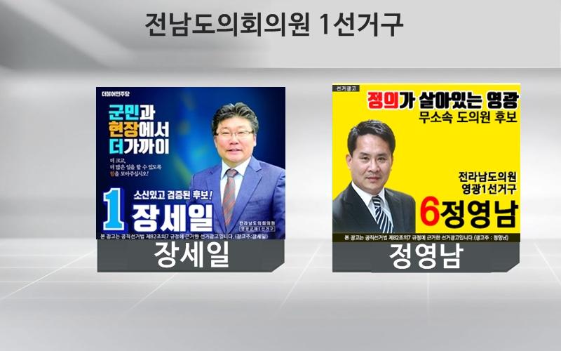 전남도의원 1선거구 결과, 장세일 당선