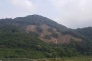 영광군, 친환경벌채 방식 도입으로 산림환경 보호에 효과