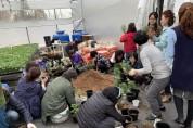 영광군농업기술센터, 국화 분재교육 인기
