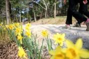 코로나시대 걷기는 물무산 행복숲에서