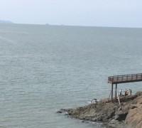 백수해안도로서 전자발찌 찬 60대 남성 숨진 채 발견