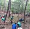 폭염과 미세먼지를 완화해 주는 숲, 우리가 만들어요!