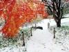 올 겨울, 낭만적인 영광으로 떠나자