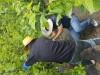영광군 스포츠산업과, 농가를 위로하는 일손돕기