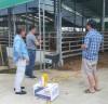 군서면, 가축 폭염 피해 예방 총력 대응