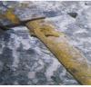 한빛원전 3호기 격납건물속에서도 '망치' 발견