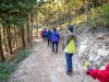 영광 물무산 행복숲, 개장 8개월 11만 명 다녀가