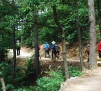 영광 물무산 행복숲, 2019년 국가균형발전사업 우수사례 선정