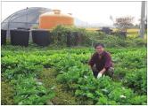 [영광군민들의 삶 이야기]은하계까지 퍼져나갈 농장 아루미팜 농장 허정행대표의 농사이야기